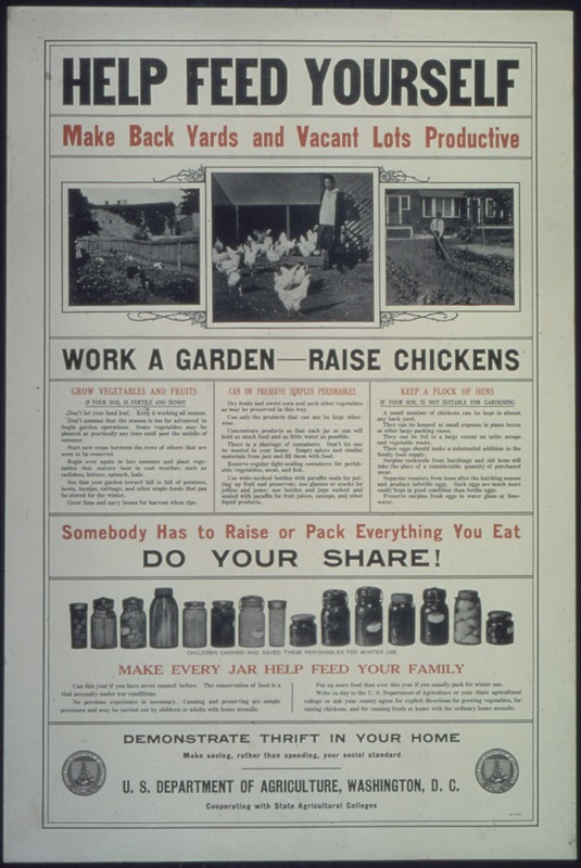 Help Feed Yourself, Make Back Yards and Vacant Lots Productive
